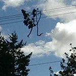 Power outage: August 2015 storm